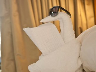 Why Everything You Know About Towel Folding Guide Is A Lie